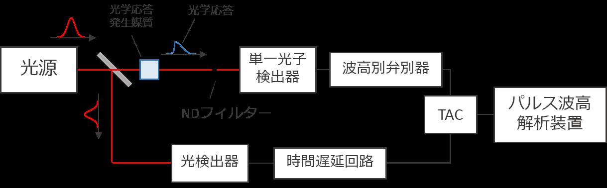 pulse_図2