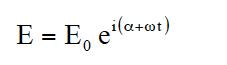 Formula 計算式なし(7)