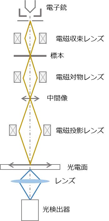 電子顕微鏡_グラフィックス1