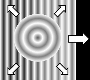 Hecht Figure4.2
