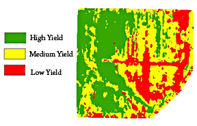 LIDAR_field_yield