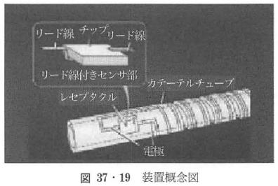図37・19