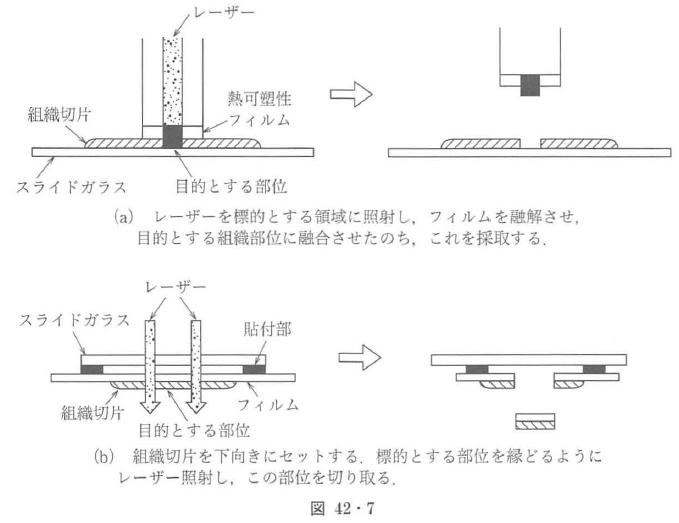 図42・7