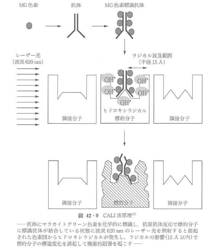 図42・9