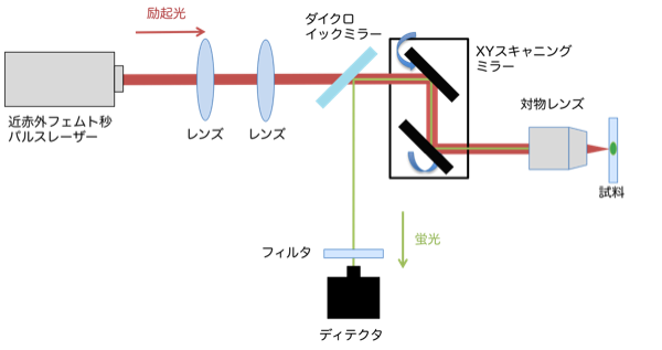 schematic-diagram-TPEF